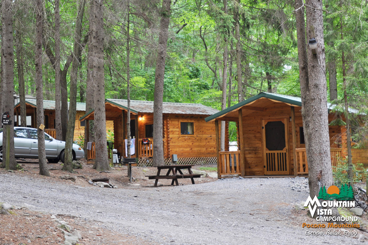 in log view cabin the mountain all asp region poconos cabins entire homes pocono ricks available