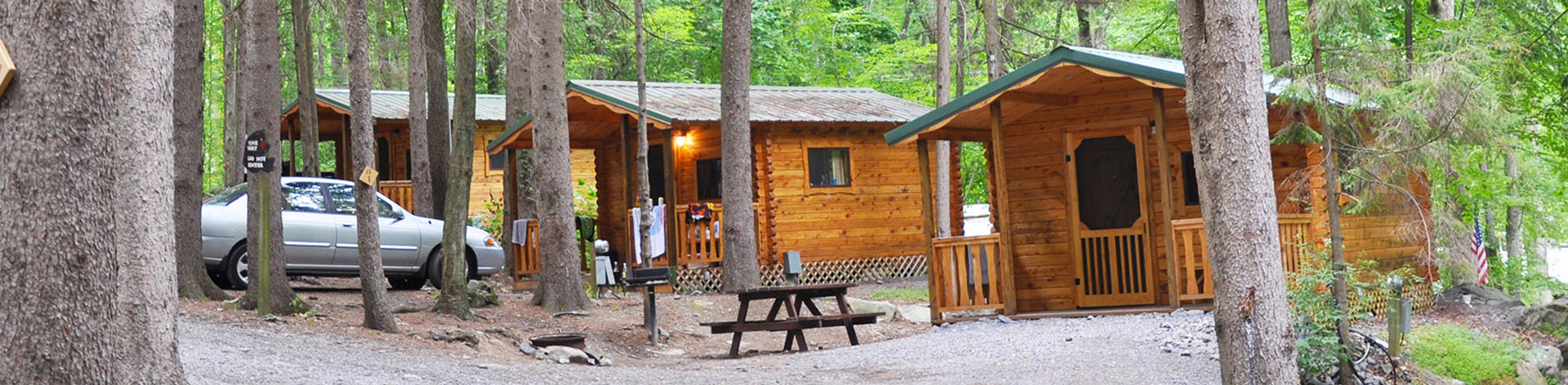 rentals rent cabins sale for getaway poconos cabin weekend